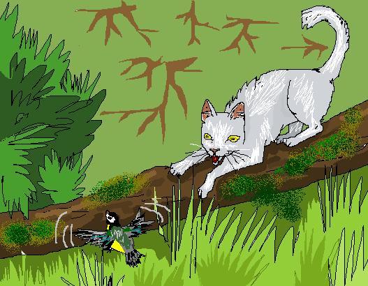 http://www.wildwarriors.narod.ru/articles/hunting/bird.jpg
