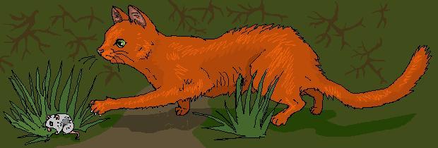 http://www.wildwarriors.narod.ru/articles/hunting/mouse.jpg