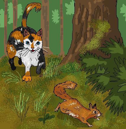 http://www.wildwarriors.narod.ru/articles/hunting/squirrel.jpg
