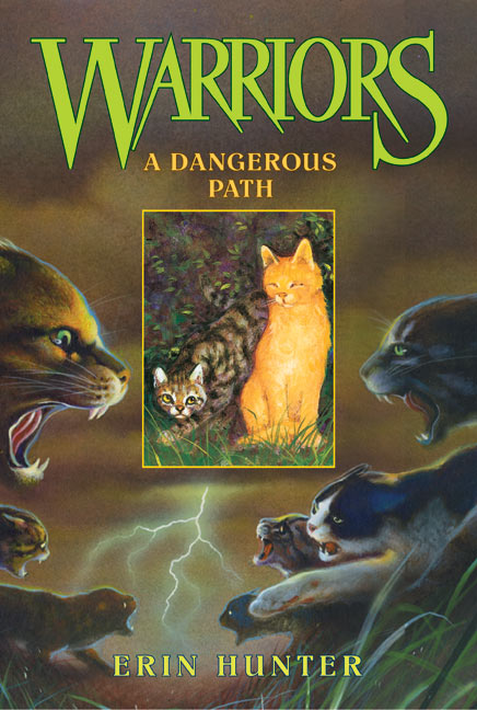 http://www.wildwarriors.narod.ru/covers/en_a_dangerous_path.jpg