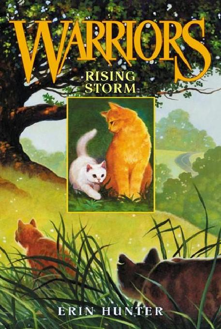 http://www.wildwarriors.narod.ru/covers/en_rising_storm.jpg