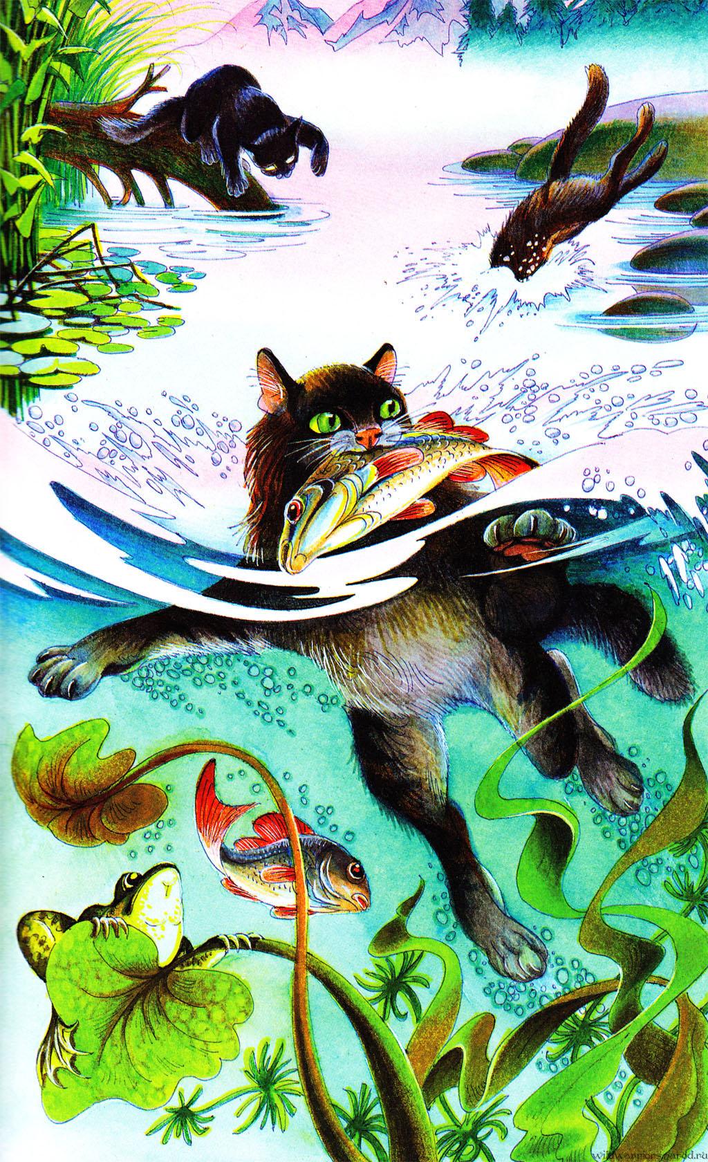 картинки коты-воители грозовое племя